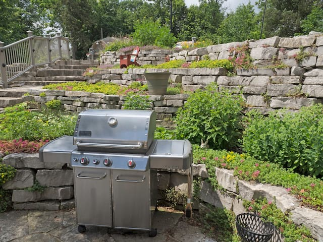 Stainless Weber grill
