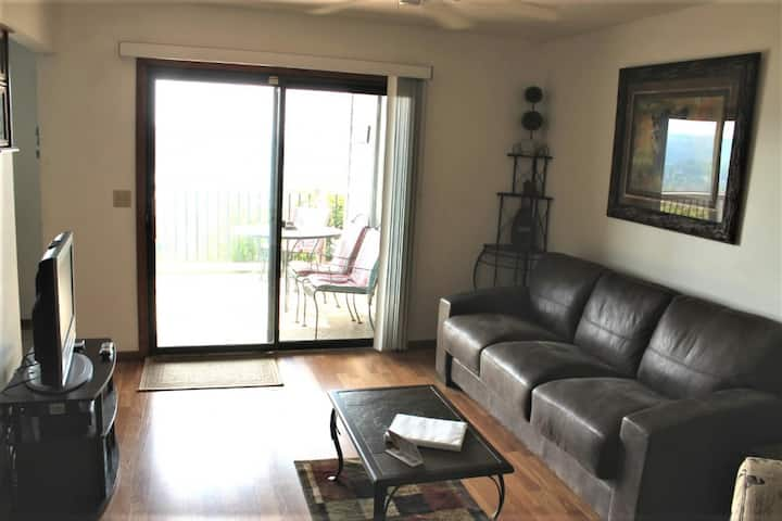So Cozy! 1 bed 1 bath Condo, Amazing Lake View, Pool, 1 mile Silver Dollar City!