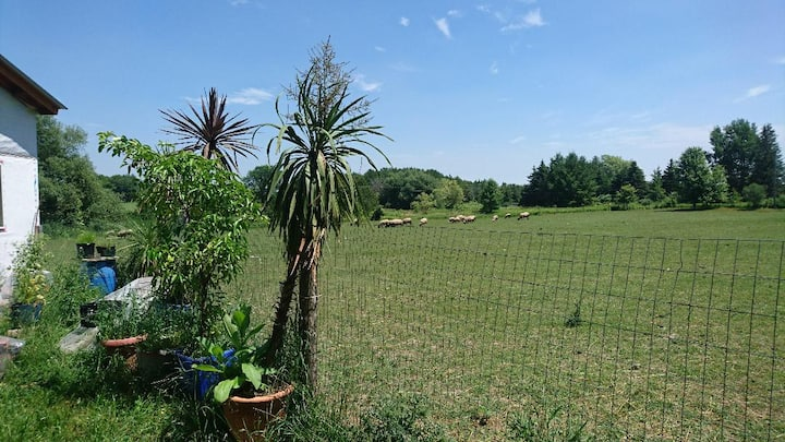 Gorgeous country setting + European Holistic Spa