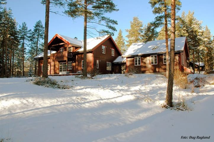 Large luxurious cabin with sauna and jaccuzi