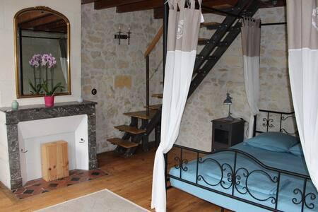 Chambre Jules Verne au Domaine l'Amourette