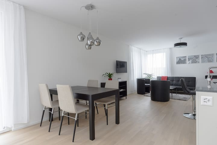 Close to Zürich center and airport - Kloten - Apartment