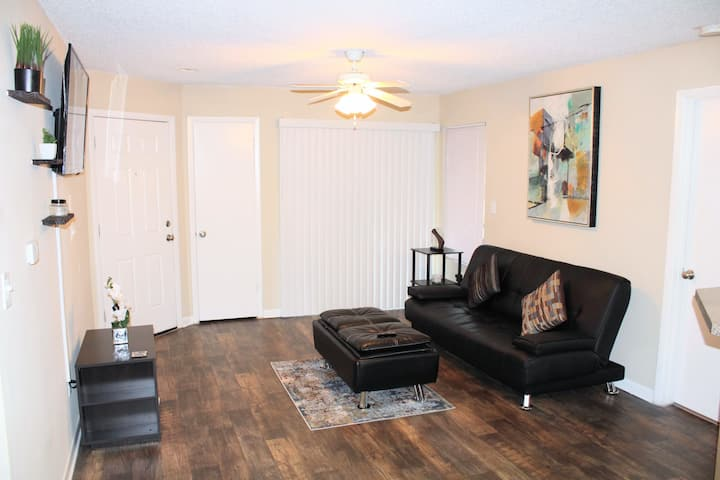 Cozy Apartment Near Theme Parks and Millenia Mall