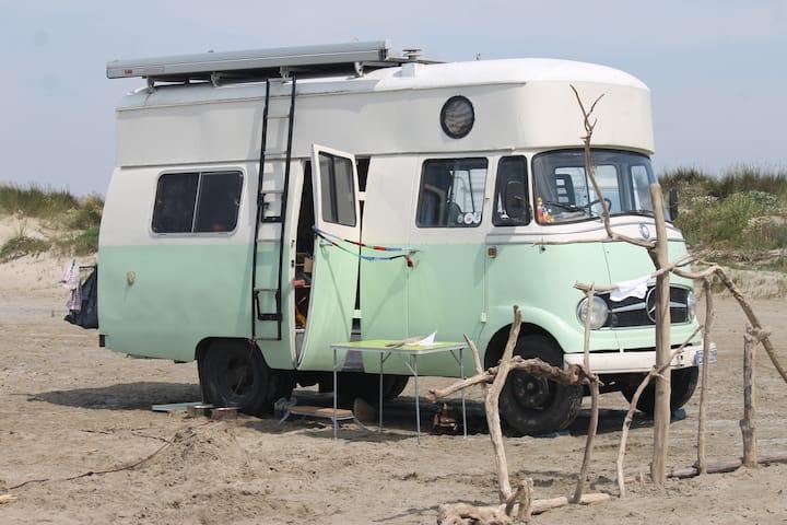 "Unser Mercedes Oldtimer Wohnmobil 319 ""Elliot"""