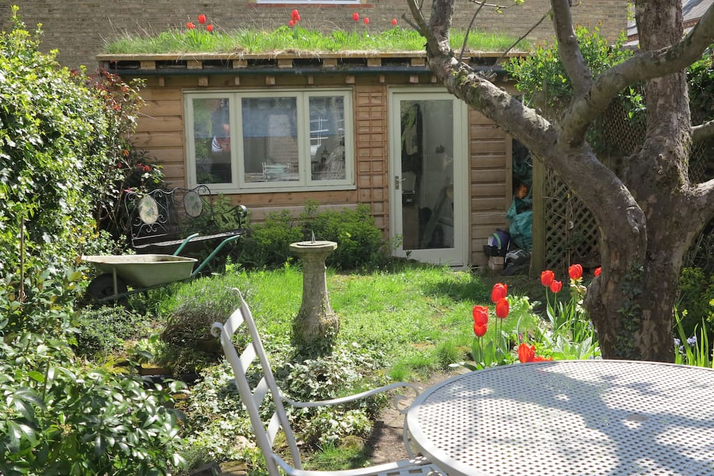 Here's the view from the kitchen window. Tulips even grow on the roof! Guests are welcome to sit outside and enjoy the sun.