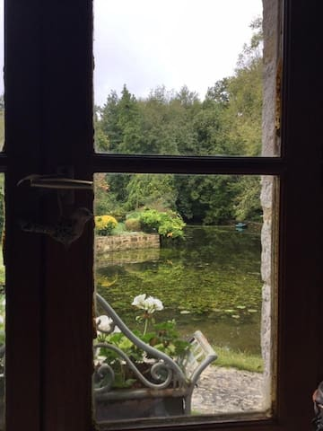 View from window onto pond