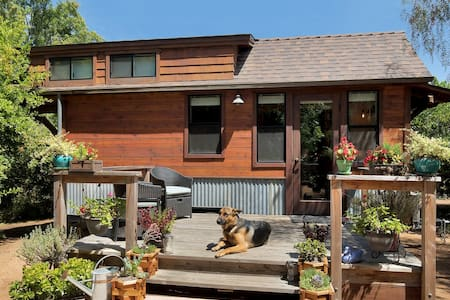 The Tiny Cabin - Coral Tree House