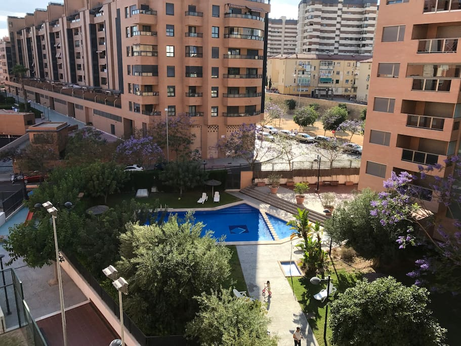 The Garden with the swimming pool