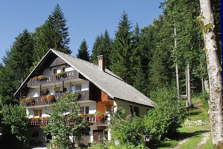 Apartments & room Destina Bohinj 3 - Ribčev Laz - Wohnung