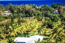 Located on one acre, Its a short walk to the shore, so close you can hear the crashing ocean waves against the lava coastline.