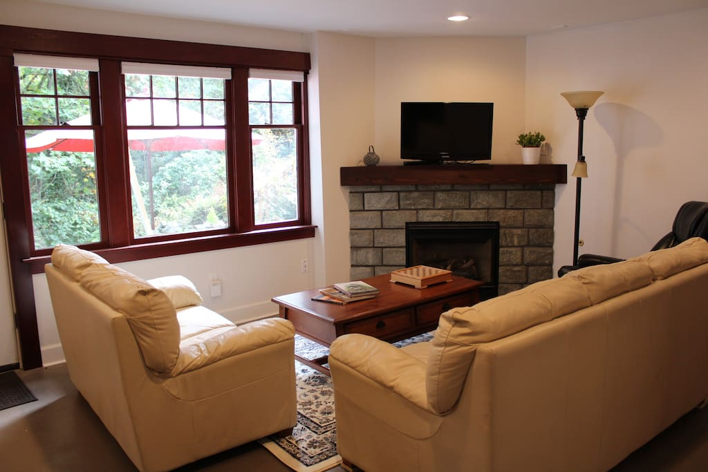 Living room with gas fireplace, tv, dvd & sleeper sofa
