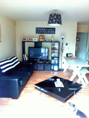 2 Bedroom Apt ideal Galway Races accommodation.