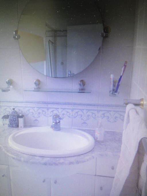 Own bathroom with toilet, basin and shower