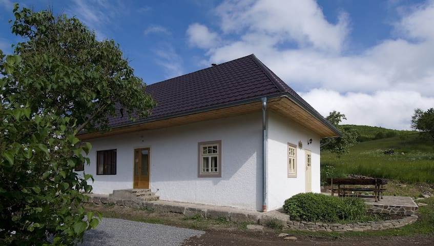 Old farmhouse Swallow - Pliešovce - Pension