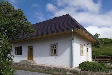 Old farmhouse Swallow - Pliešovce