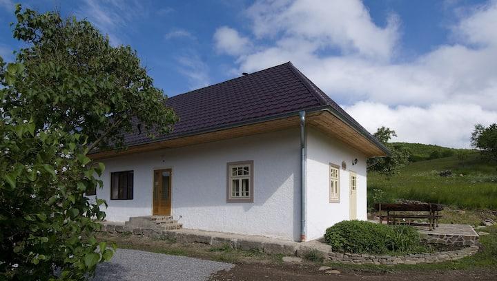 Old farmhouse Swallow
