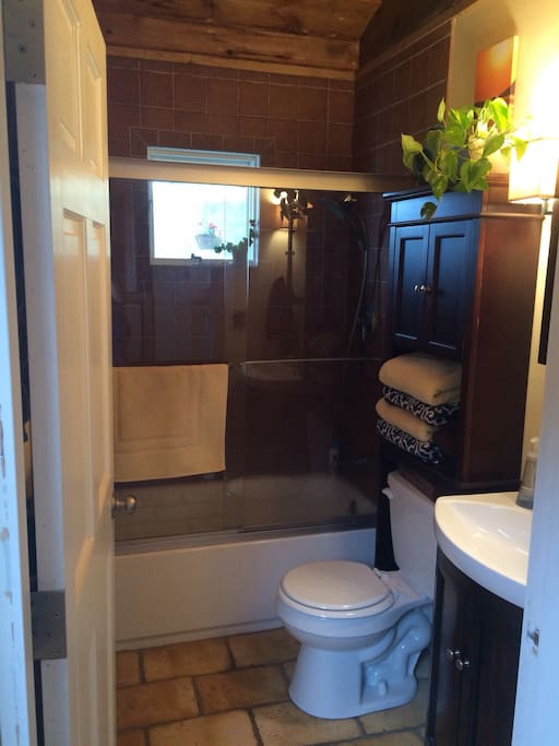 Bathroom with a window in the shower that opens!