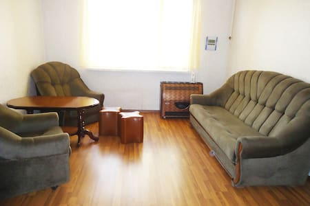 15min to center-Sunny House-extremely low price - Yerevan - Apartment