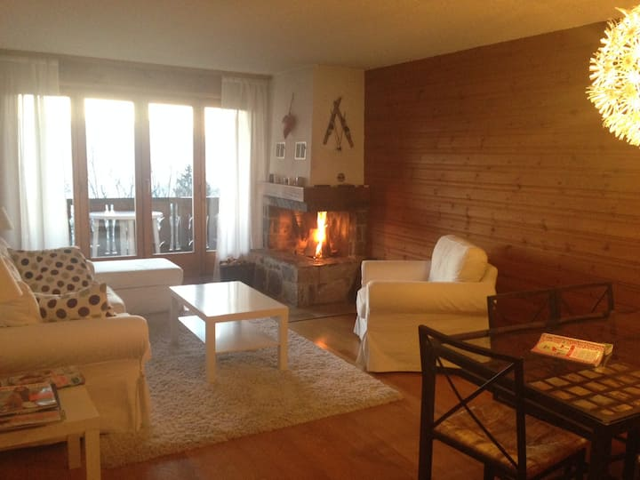 With friends around the fireplace, Villars s/Ollon