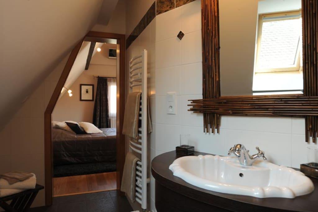 chambre d 39 h te waydelich 10 min de strasbourg guest houses louer oberschaeffolsheim. Black Bedroom Furniture Sets. Home Design Ideas