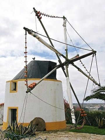 A windmill in the village