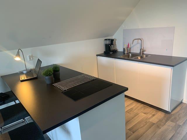 Moderne leilighet, helt nytt kjøkken og Bad