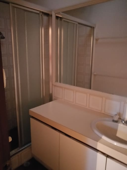 The shower room of master room