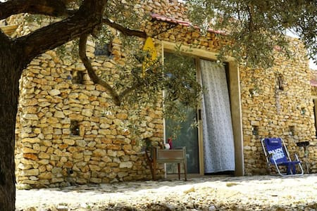 Nadaly Rooms, escape through nature & time - FURAT