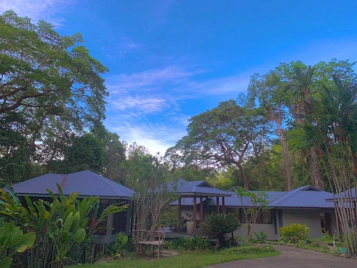 Rainforest pavilions - peace in nature