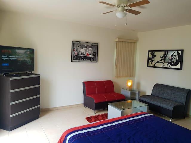 Apartment#8 Zona Tec-Nuevo Sur, Av. Alfonso Reyes