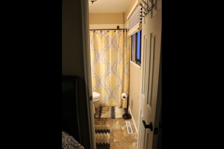 Master bathroom- shower with detachable shower head, toilet, and single sink.