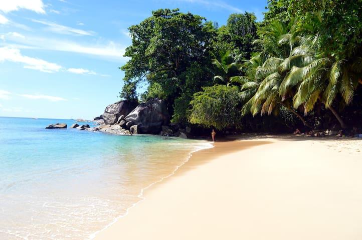 Sundown Beach Villa-Beachfront Villa in Paradise