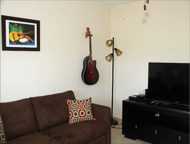 Music themed media room. Consists of pull out sofa bed, chair and a large screen color T.V.  and A/C.