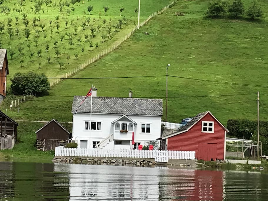 View from the fjord summer time