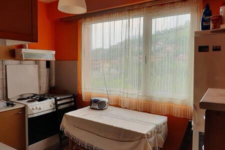 Уютен тристаен апартамент в град Тетевен
