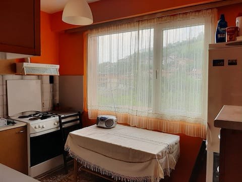 Apartment Milevi, Bulgaria, 5700 Teteven