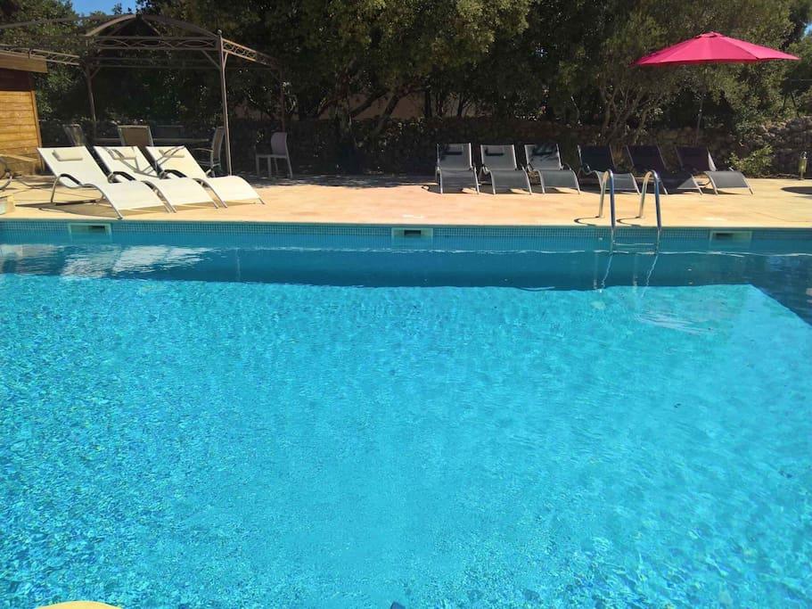 Length of adult pool (10m x 6m x 2m)