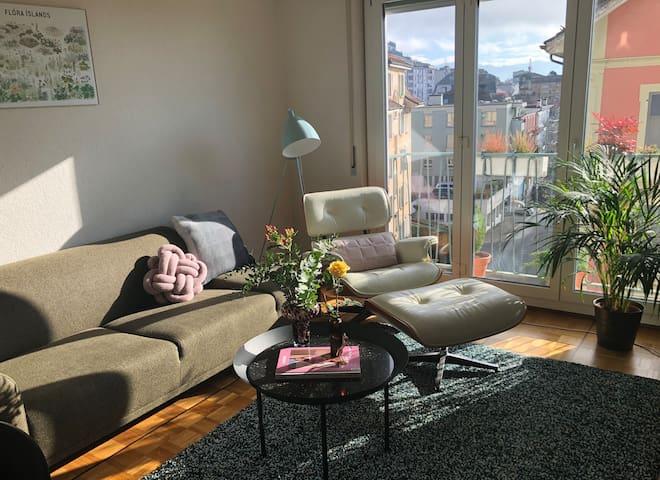 1 bedroom apartment close to city center