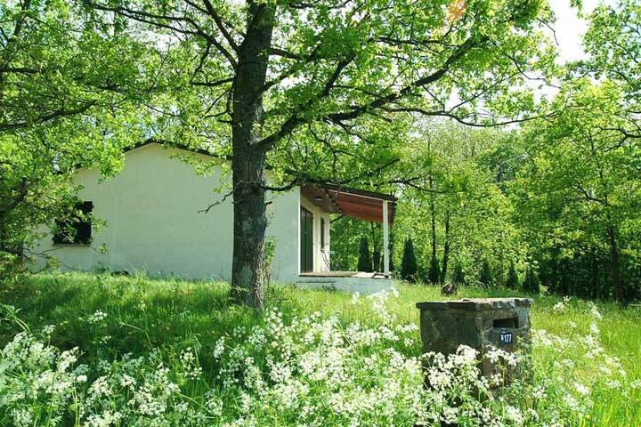 Idyllische bungalow met een bostuin nabij Durbuy