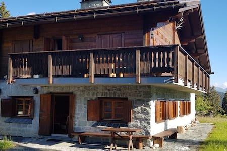 Chalet Wulli close to ski slopes Savognin
