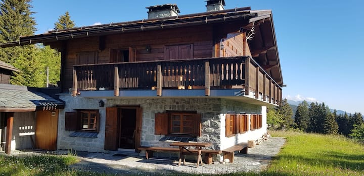 Chalet Wulli close to ski slopes Savognin