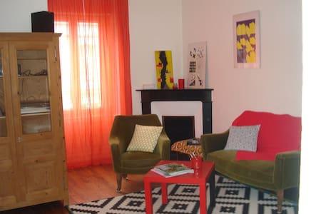 Appart cosi, lumineux, hyper-centre, 15' zoo - La Flèche - Appartement