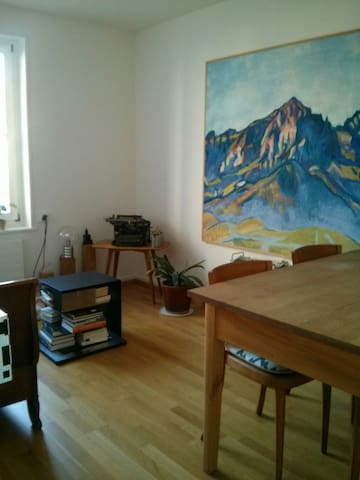 Cosy private apartement in Basel - Bazel - Appartement