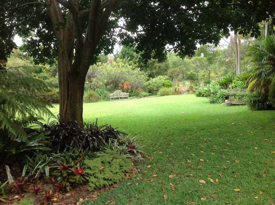 Gently sloping lawn surrounded by garden. Children love running around the large garden area.
