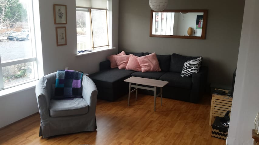 Hanna´s home - Reykjavík - Byt