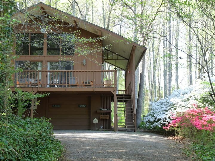 A Mountain Swiss Chalet in the Smokies Mountains!