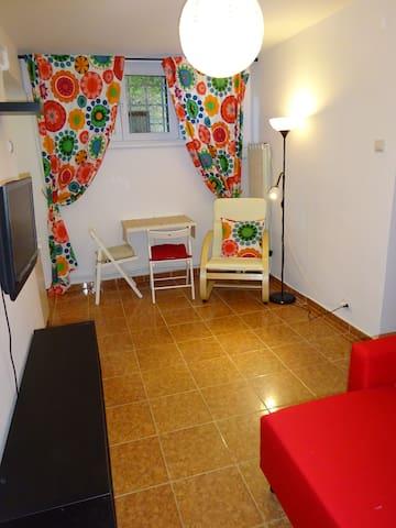 Private studio in Bucharest - free wi-fi, garden - București - Jiné