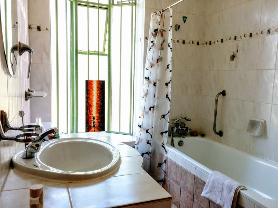 The bathroom is en suite and comes with a fully functioning bathtub.