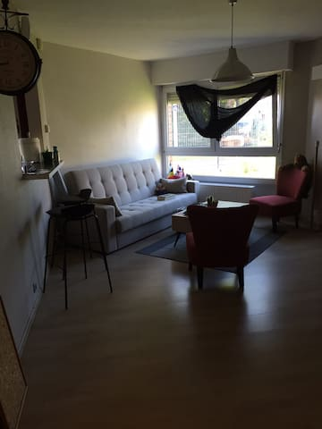 Lovely ground floor double bedroom 20' from Lille. - Lille - Apartment