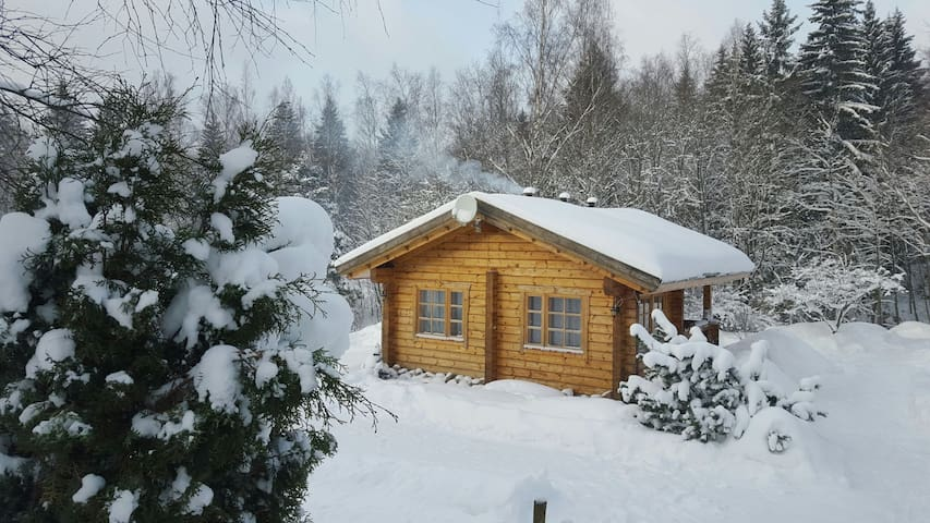 Finnish home Polviselkä